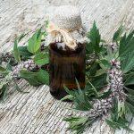 motherwort and medicine bottle