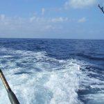 deep sea fishign in hawaii